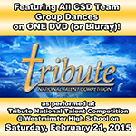 CSD Teams @ Tribute & D4D 2015 Combo #1